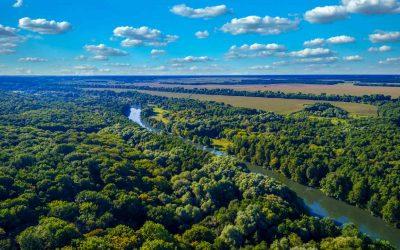 Chakra ein Anbausystem, das die Artenvielfalt und die Lebensgrundlage der Indigenen im Amazonasgebiet schützt.