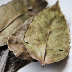 Guayusa Energy Tea, ganze Blätter
