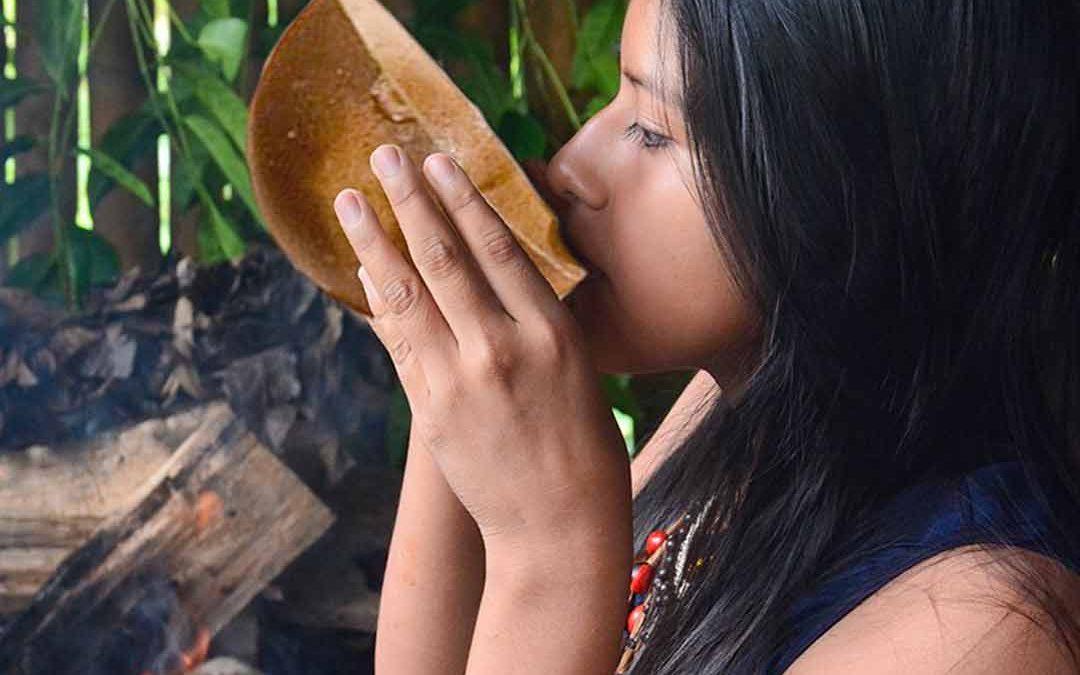 Was sind luzide Träume und kann Guayusa Tee das verstärken?