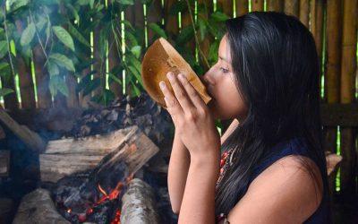 Guayusa- der Energy Tee aus dem Amazonas Ecuadors