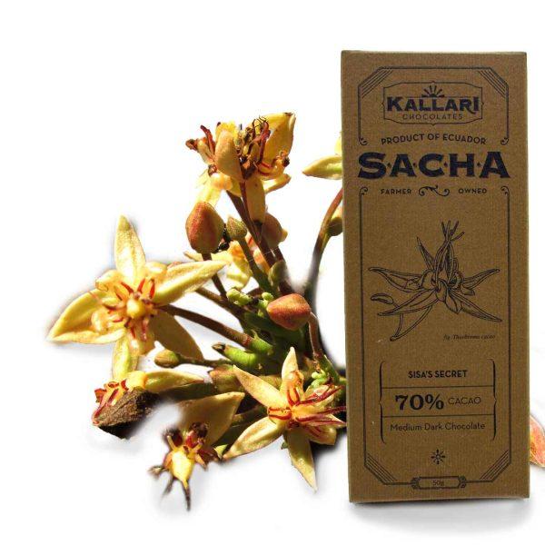 Schokolade-70-Cacao-(SACHA)