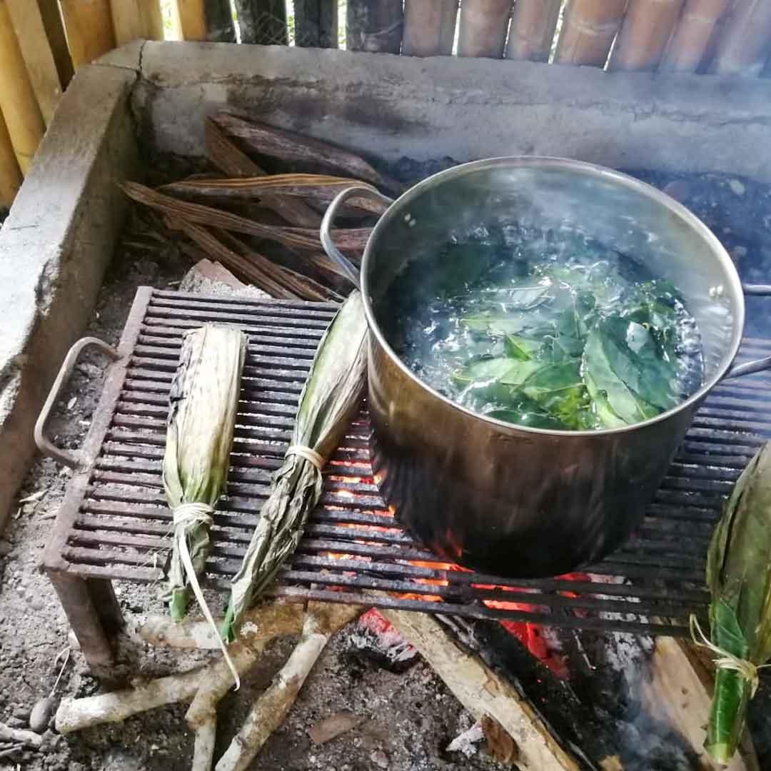Guayusa-Tee-gekocht