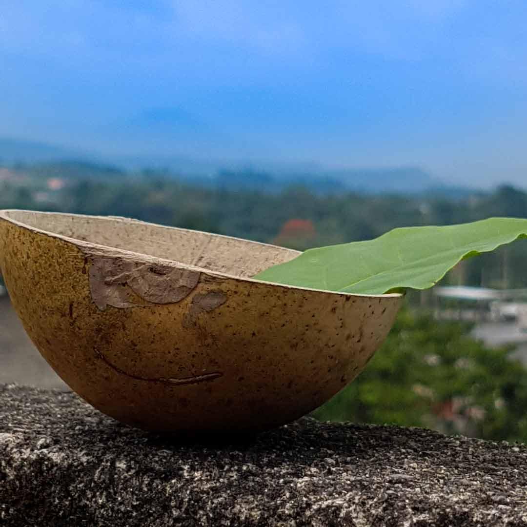 Guayusa-Tee