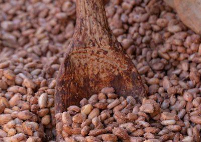 Fermentation schokolade