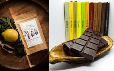 Inhaltstoff Theobromin in Guayusa Tee und Schokolade